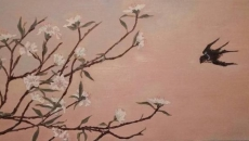 golondrina-flowers
