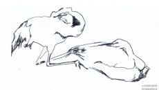03_animals0001_o