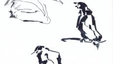 06_animals0001_o