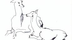 09_animals0001_o